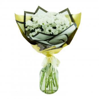 9 кустовых Хризантем в двойной упаковке