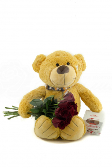 Букет из 9 Эквадорских роз и игрушка с конфетами