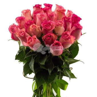 Букет из 25 Эквадорских  роз