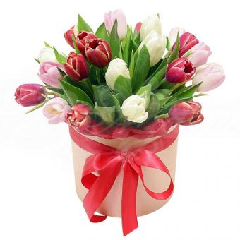 Коробочка их 23 тюльпанов