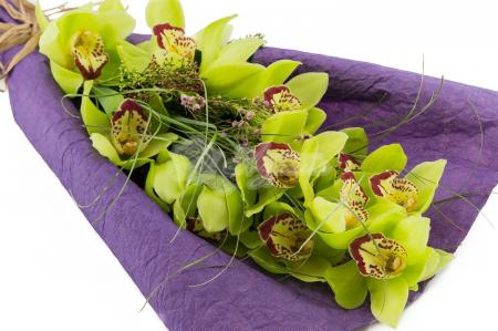 Ветка Орхидеи в упаковке