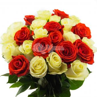 Букет из 25 Эквадорских красно-белых роз